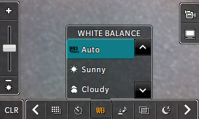White balance options