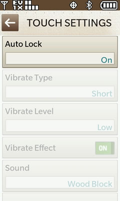 Touch Settings Auto Lock