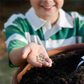 Middle-schoolers Plant Seeds for a Budd...