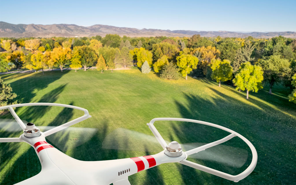Could Drones Plant 1 Billion Trees Per Year?