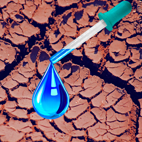 Tech Tips for Surviving the Drought