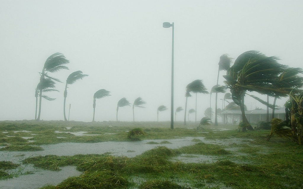 Verizon customers can support Mexico friends, families  and relief efforts following Hurricane Patricia