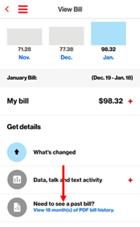 Image: Download billing statement: Need to see a past bill