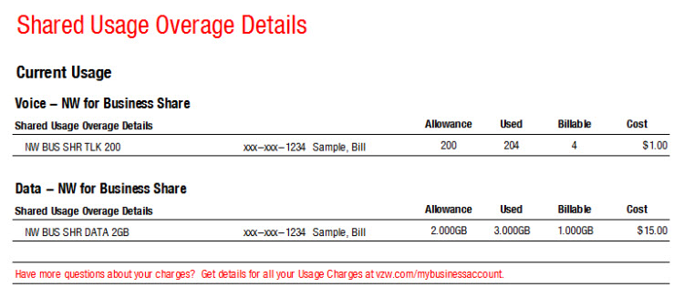 Shared Usage Overage Details