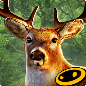 Image: DEER HUNTER 2014