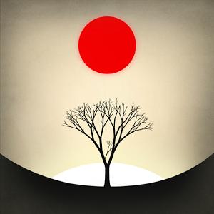 Image: Prune
