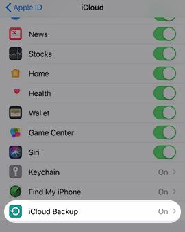 Copia de seguridad en iCloud seleccionada