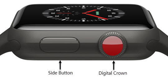 Side and Digital Crown buttons