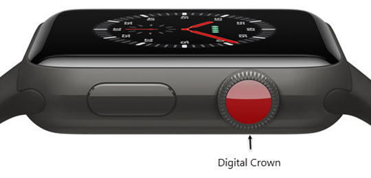 apple watch serial number identifier