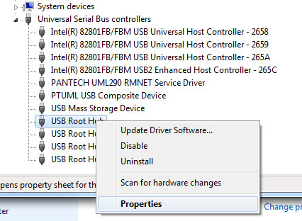 Right-click USB Root Hub then select Properties