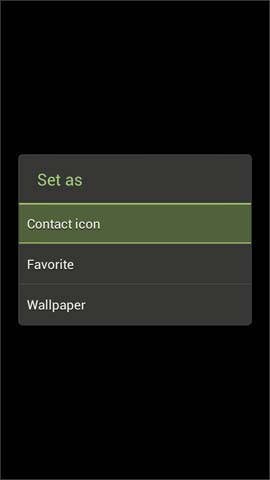 Set as options screen, Contact icon