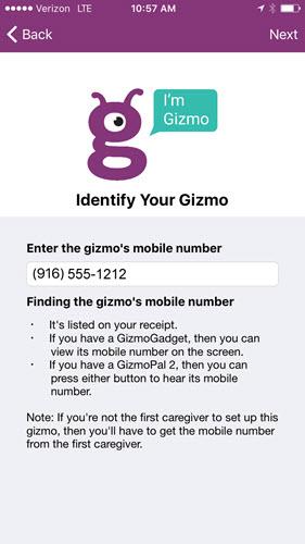 Pantalla de identificación de Gizmo
