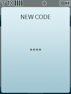 Enter the new code