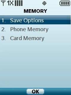 Selecciona Save Options