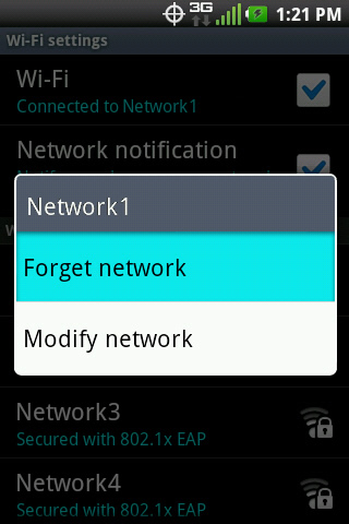WiFi network options with Forget network