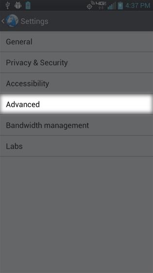 En el navegador, selecciona Settings Advanced