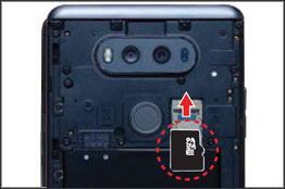 Inserting SD / Memory Card