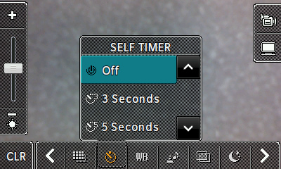 Self timer options
