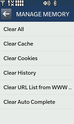 Browser Clear Memory