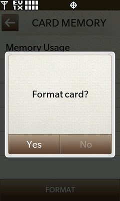 Confirm Format Card