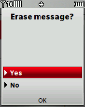 Erase confirmation screen