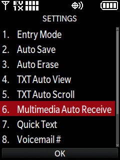 Select Multimedia Auto Receive