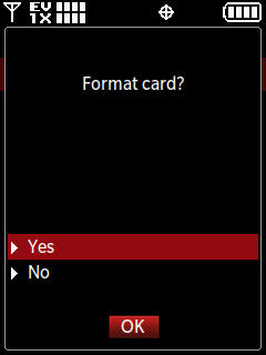 Select Yes to format card