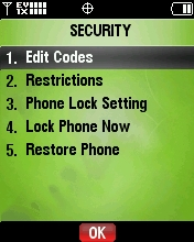 Selecciona Edit Codes