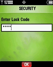 Enter the Lock Code