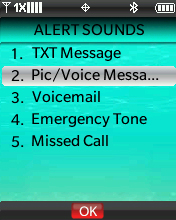 Alert Sounds menu with focus on selecting Pic / Voice Message