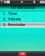 TXT Message Alert menu with focus on selecting Reminder