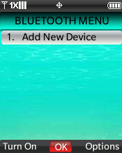 Bluetooth Menu with focus on selecting Options