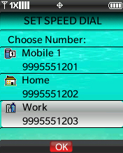 Set Speed Dial Choose Number screen