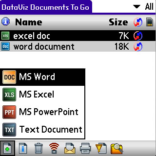 Document File Type