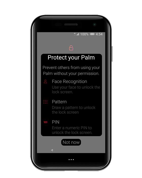 Protege tu Palm
