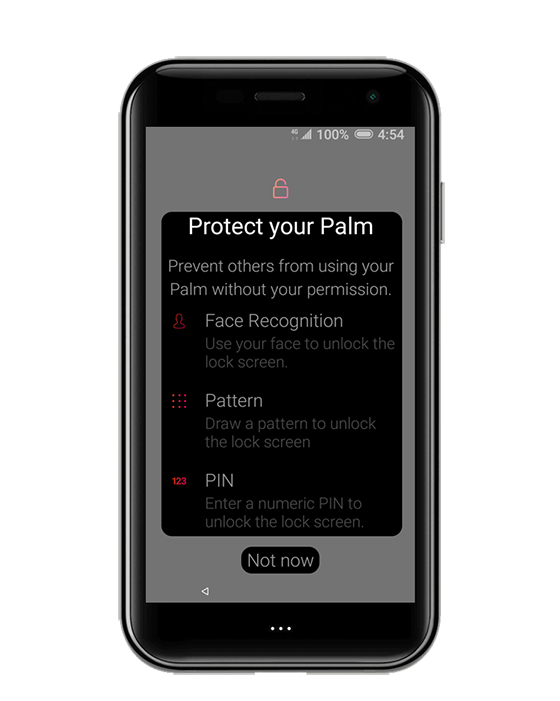 Protect your palm