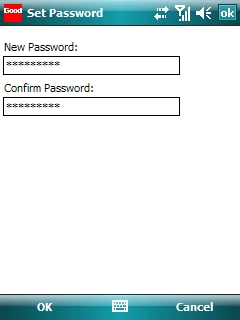 Set Password screen with desired password entered