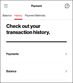 payment hisory