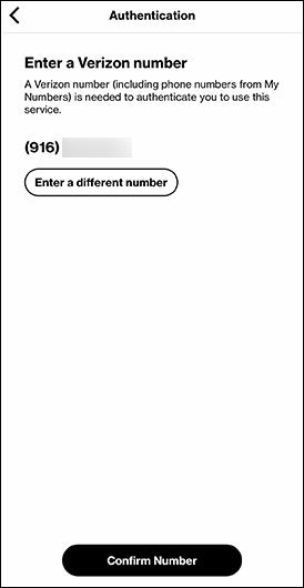 Enter a Verizon number