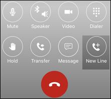 iOS park call