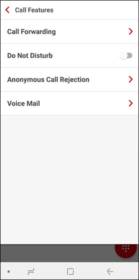 Call Features menu with emphasis on Call Forwarding