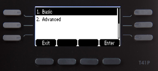 Settings screen with Basic highlighted
