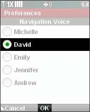 Select a Voice Option