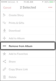 Pulsa Remove From Album
