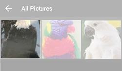 Tap Picture Album
