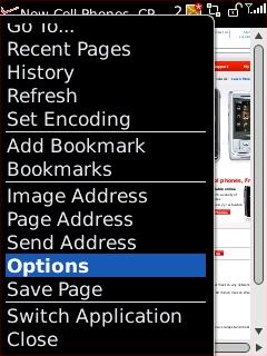 Pantalla del navegador con Options resaltado
