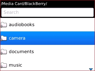 Media Card/BlackBerry con camera
