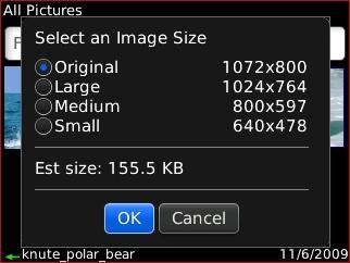 Selecciona un tamaño de imagen