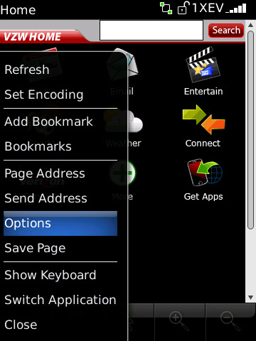 blackberry browser with options