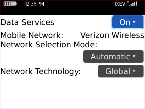 Mobile Network screen with Data Services highlighted